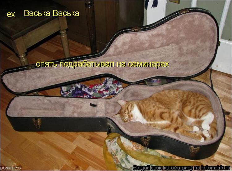 Котоматрица: ех Васька Васька опять подрабатывал на семинарах