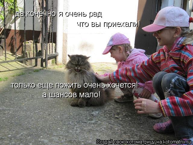 Котоматрица: да,конечно я очень рад что вы приехали! только еще пожить очень хочется! а шансов мало!
