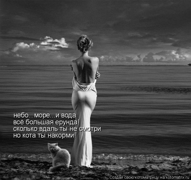Котоматрица: небо...море...и вода всё большая ерунда! сколько вдаль ты не смотри но кота ты накорми!