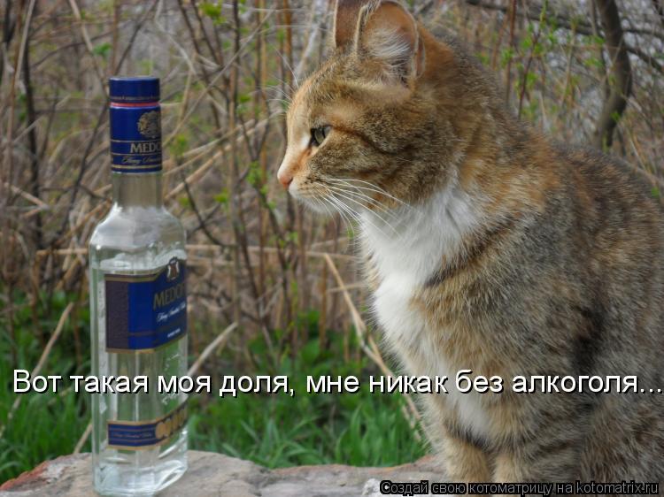 Котоматрица: Вот такая моя доля, мне никак без алкоголя...