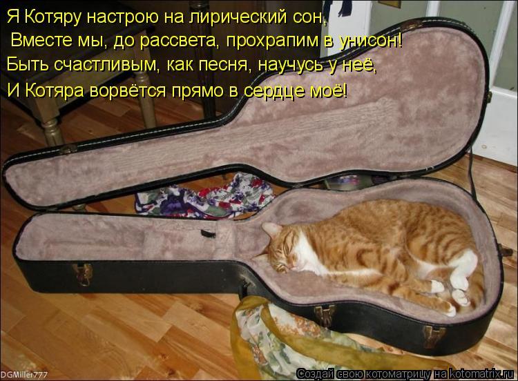 Котоматрица: Я Котяру настрою на лирический сон,    И Котяра ворвётся прямо в сердце моё!   Вместе мы, до рассвета, прохрапим в унисон!   Быть счастливым, как