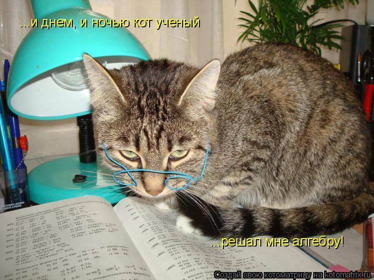 Котоматрица: ...и днем, и ночью кот ученый ...решал мне алгебру!