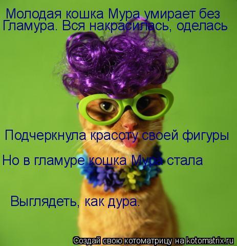 Котоматрица: Молодая кошка Мура умирает без Гламура. Вся накрасилась, оделась Подчеркнула красоту своей фигуры Но в гламуре кошка Мура стала  Выглядеть,
