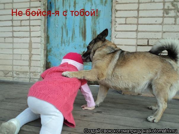 Котоматрица: Не бойся-я с тобой!