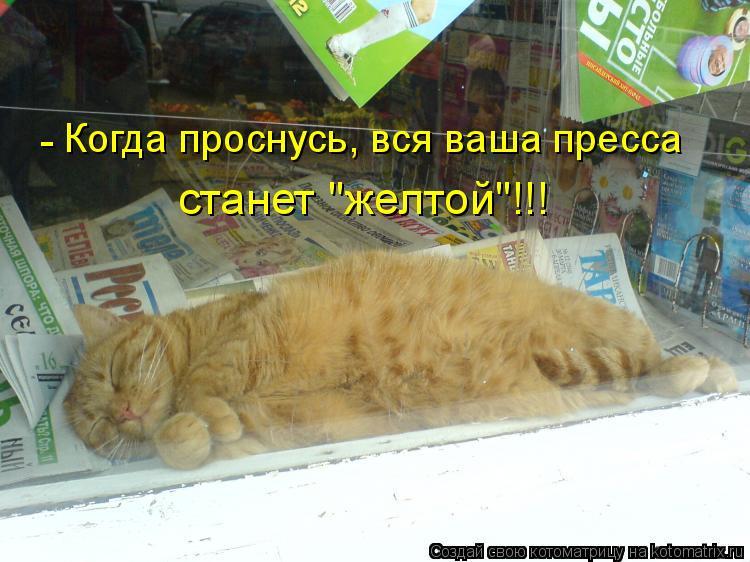 """Котоматрица: Когда проснусь, вся ваша пресса станет """"желтой""""!!! -"""