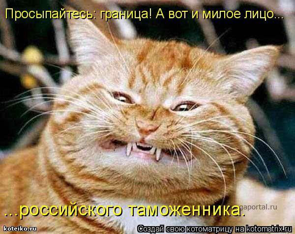 Котоматрица: Просыпайтесь: граница! А вот и милое лицо... ...российского таможенника.