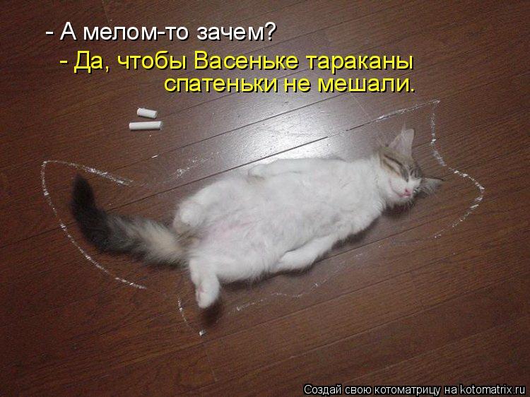 Котоматрица: - А мелом-то зачем? - Да, чтобы Васеньке тараканы  спатеньки не мешали.