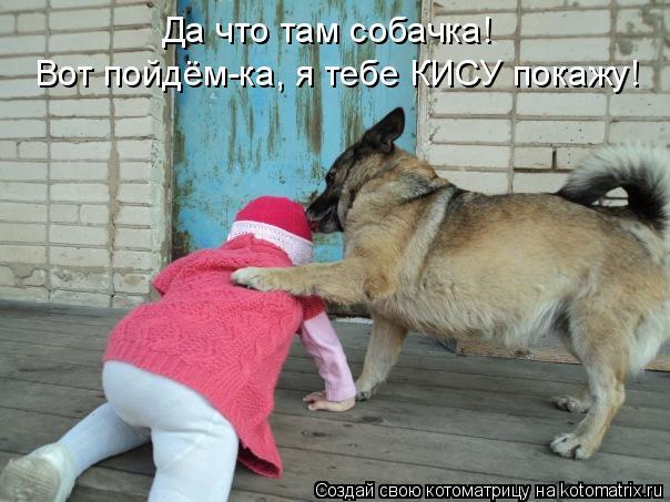 Котоматрица: Да что там собачка! Вот пойдём-ка, я тебе КИСУ покажу!