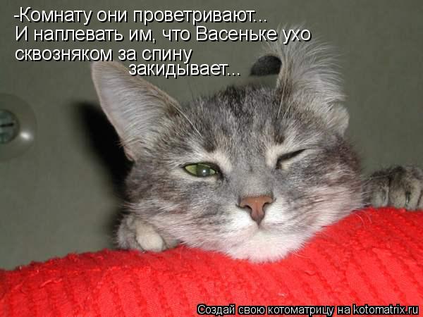 Котоматрица: -Комнату они проветривают... И наплевать им, что Васеньке ухо сквозняком за спину закидывает...