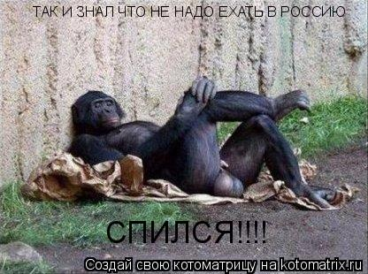 Котоматрица: ТАК И ЗНАЛ ЧТО НЕ НАДО ЕХАТЬ В РОССИЮ СПИЛСЯ!!!!