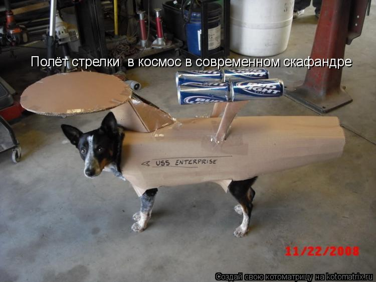 Котоматрица: Полёт стрелки  в космос в современном скафандре