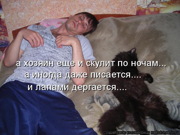 Котоматрица: а хозяин еще и скулит по ночам... а иногда даже писается.... и лапами дергается....