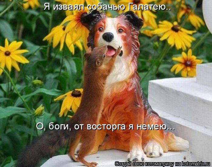 Котоматрица: Я изваял собачью Галатею.. О, боги, от восторга я немею...