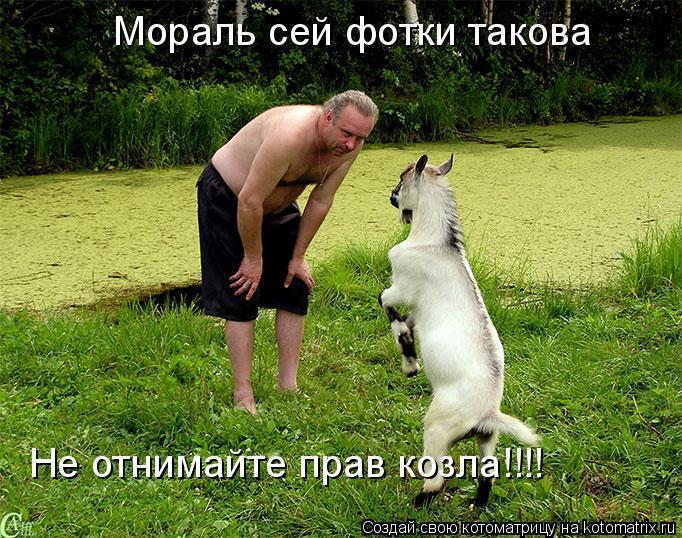 Котоматрица: Мораль сей фотки такова Не отнимайте прав козла!!!!