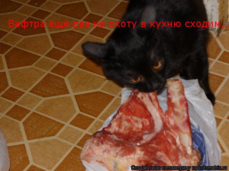 Котоматрица: Вафтра ещё раз на охоту в кухню сходим..