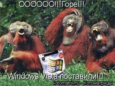 Котоматрица: ОООООО!!!Горе!!! Windows Vista поставили!!!