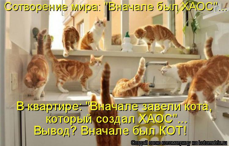 """Котоматрица: В квартире: """"Вначале завели кота, который создал ХАОС""""... Вывод? Вначале был КОТ! Сотворение мира: """"Вначале был ХАОС""""..."""