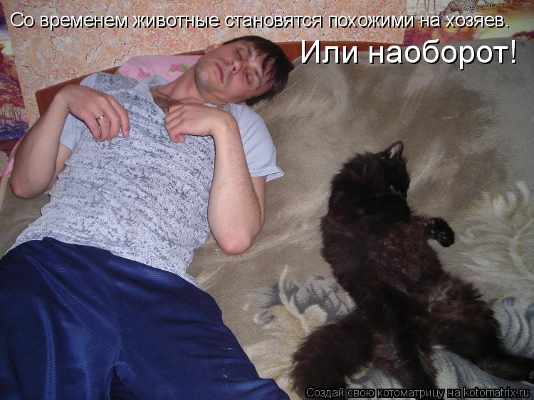 Котоматрица: Со временем животные становятся похожими на хозяев. Или наоборот!