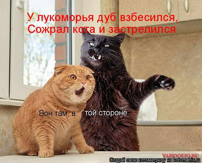 Котоматрица: Вон там, в  той стороне У лукоморья дуб взбесился, Сожрал кота и застрелился