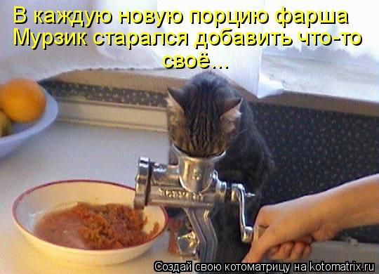 Котоматрица: В каждую новую порцию фарша Мурзик старался добавить что-то своё...