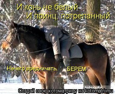 Котоматрица: И конь не белый И принц, потрепанный Нечего вредничать, БЕРЕМ