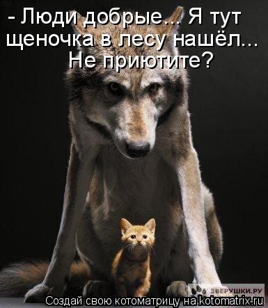 Котоматрица: - Люди добрые... Я тут щеночка в лесу нашёл...  Не приютите?