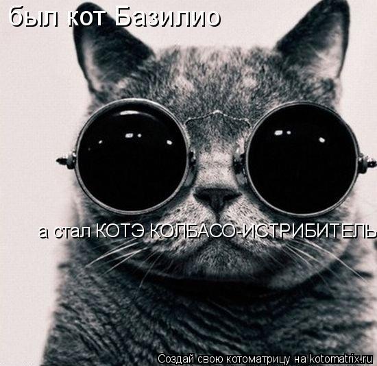 Котоматрица: был кот Базилио а стал КОТЭ КОЛБАСО-ИСТРИБИТЕЛЬ