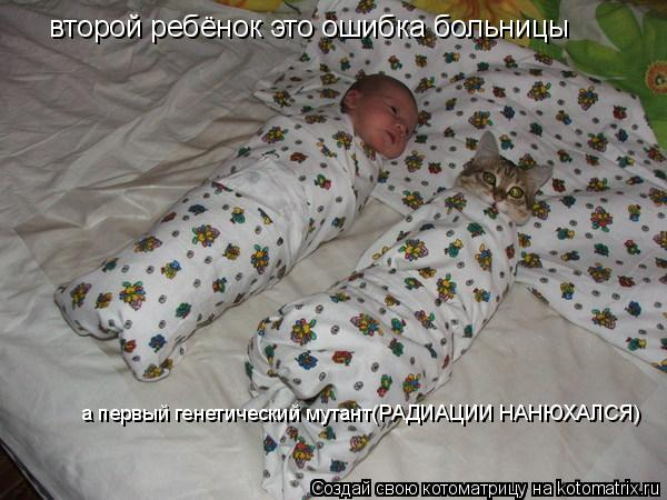 Котоматрица: второй ребёнок это ошибка больницы а первый генетический мутант(РАДИАЦИИ НАНЮХАЛСЯ)