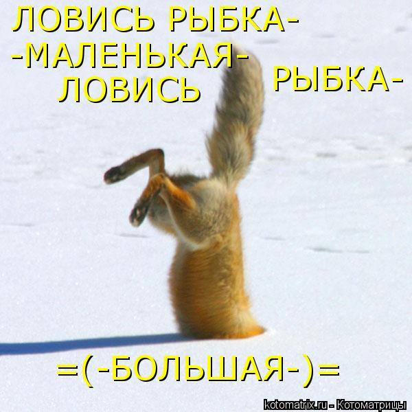 Котоматрица: ЛОВИСЬ РЫБКА- -МАЛЕНЬКАЯ- ЛОВИСЬ РЫБКА- =(-БОЛЬШАЯ-)=