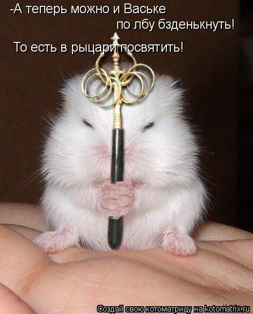 Котоматрица: -А теперь можно и Ваське  по лбу бзденькнуть! То есть в рыцари посвятить!