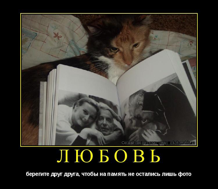 Котоматрица: любовь берегите друг друга, чтобы на память не остались лишь фото