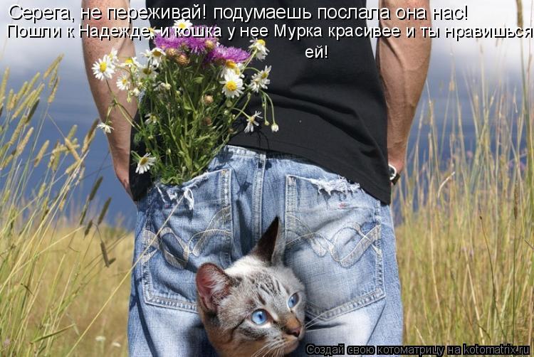 Котоматрица: Серега, не переживай! подумаешь послала она нас! Пошли к Надежде, и кошка у нее Мурка красивее и ты нравишься  ей!