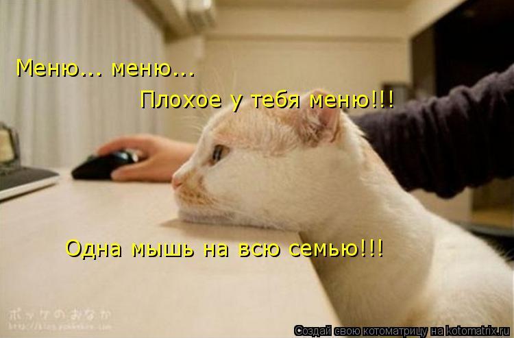 Котоматрица: Меню... меню... Плохое у тебя меню!!! Одна мышь на всю семью!!!