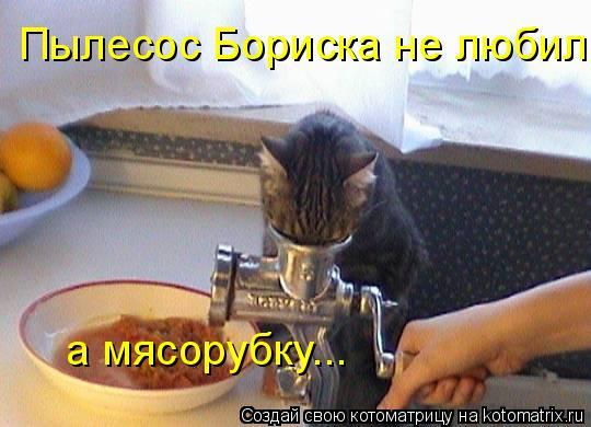 Котоматрица: Пылесос Бориска не любил а мясорубку...