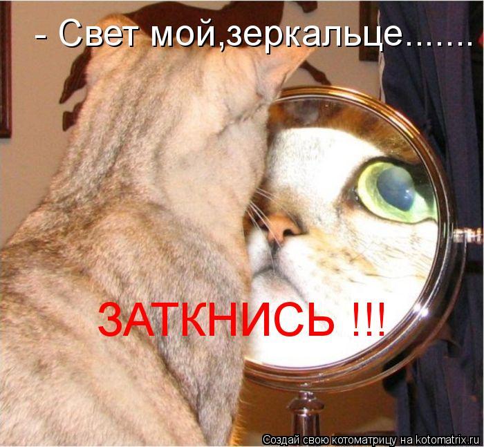 Котоматрица: - Свет мой,зеркальце....... ЗАТКНИСЬ !!!