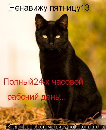 Котоматрица: Ненавижу пятницу13 Полный24-х часовой рабочий день...