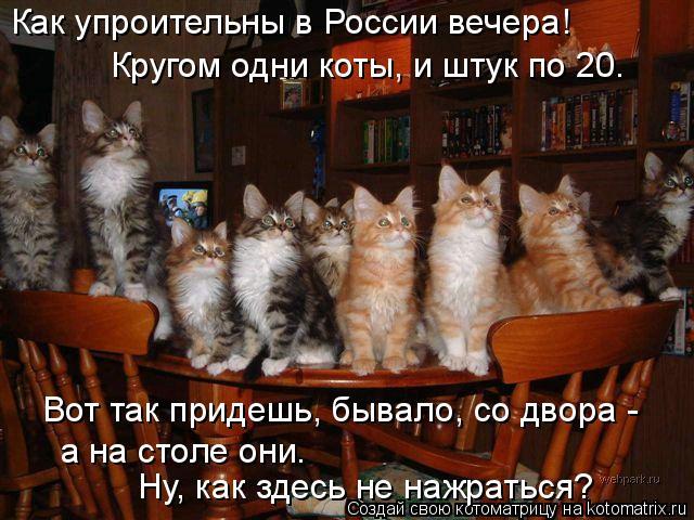 Котоматрица: Как упроительны в России вечера! Вот так придешь, бывало, со двора -  Кругом одни коты, и штук по 20. а на столе они.  Ну, как здесь не нажраться?
