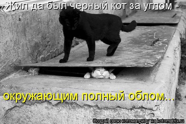 Котоматрица: Жил да был черный кот за углом -  окружающим полный облом...