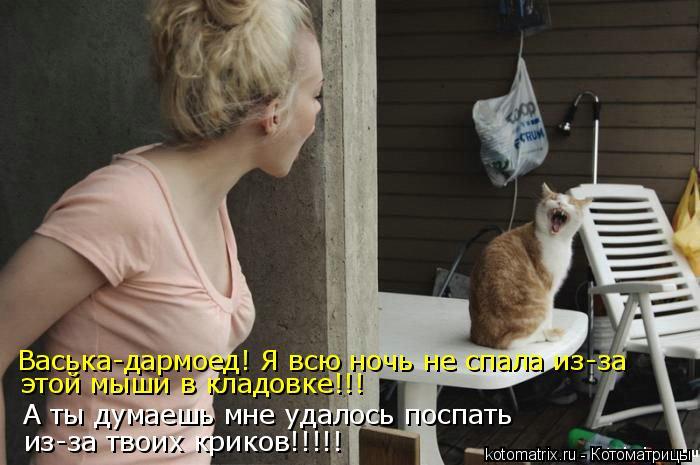 Котоматрица - Васька-дармоед! Я всю ночь не спала из-за А ты думаешь мне удалось пос