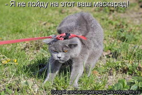Котоматрица: - Я не пойду на этот ваш маскарад!