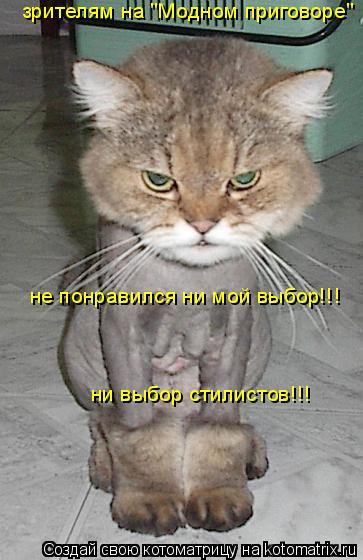"""Котоматрица: зрителям на """"Модном приговоре"""" не понравился ни мой выбор!!! ни выбор стилистов!!!"""