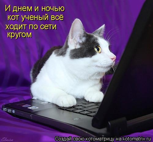 Котоматрица: И днем и ночью  кот ученый всё ходит по сети  кругом