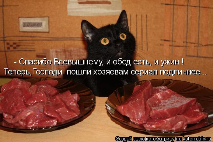 Котоматрица: - Спасибо Всевышнему, и обед есть, и ужин ! Теперь,Господи, пошли хозяевам сериал подлиннее...