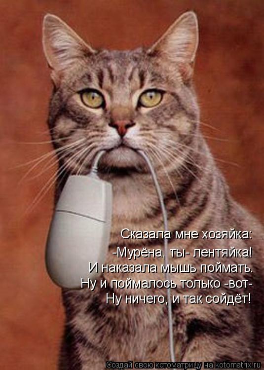 Котоматрица: Сказала мне хозяйка: -Мурёна, ты- лентяйка! Ну и поймалось только -вот- Ну ничего, и так сойдёт! И наказала мышь поймать.