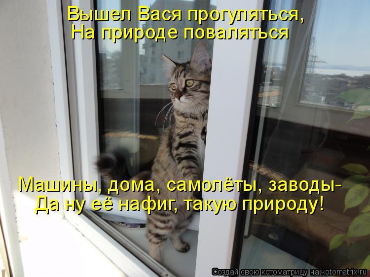 Котоматрица: Вышел Вася прогуляться, На природе поваляться Машины, дома, самолёты, заводы- Да ну её нафиг, такую природу!