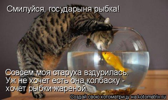 Котоматрица: Смилуйся, государыня рыбка! Совсем моя старуха вздурилась. Уж не хочет есть она колбаску - хочет рыбки жареной.