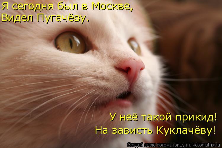 Котоматрица: Я сегодня был в Москве, Видел Пугачёву. У неё такой прикид! На зависть Куклачёву!