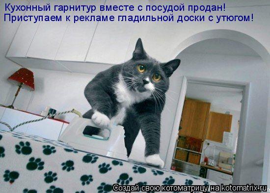 Котоматрица: Кухонный гарнитур вместе с посудой продан! Приступаем к рекламе гладильной доски с утюгом!
