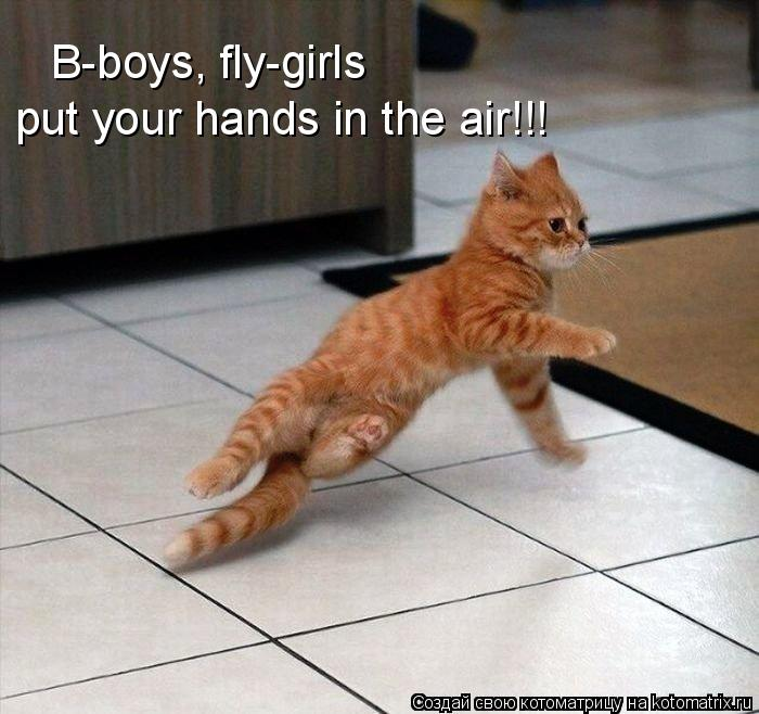 Котоматрица: B-boys, fly-girls put your hands in the air!!!