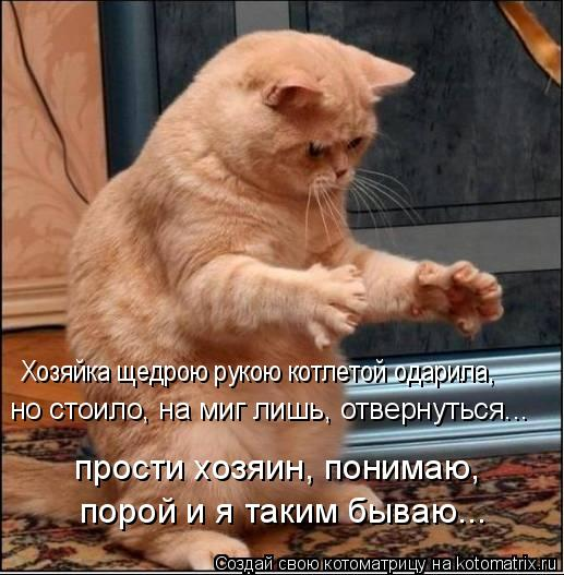 Котоматрица: Хозяйка щедрою рукою котлетой одарила,   но стоило, на миг лишь, отвернуться...   прости хозяин, понимаю,   порой и я таким бываю...